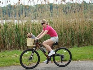 自転車ダイエットについてブログ 実践すると効果は?
