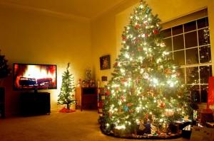 クリスマスは家で映画デートをしよう!おすすめの映画は? その3